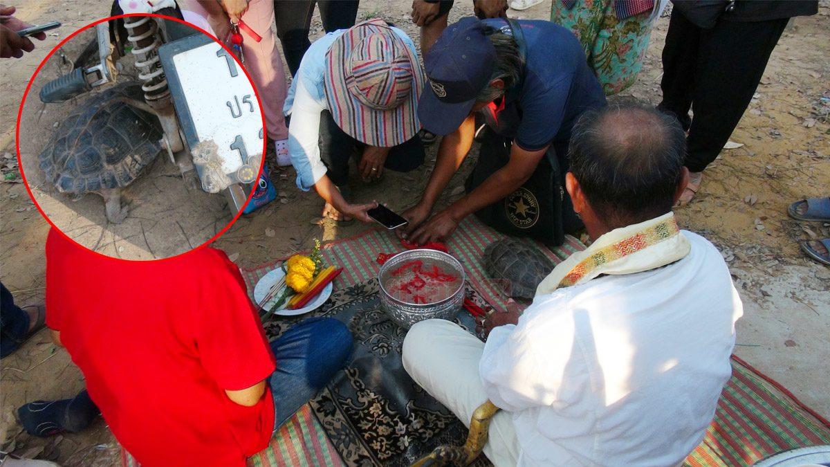 ชาวบ้านแห่ส่องขันน้ำมนต์ ได้เลข 4 ตัว ฮือฮาเต่าเดินผ่านใกล้รถอาจารย์เริง